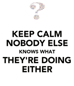 Poster: KEEP CALM NOBODY ELSE KNOWS WHAT THEY'RE DOING EITHER