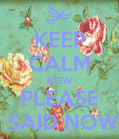 Poster: KEEP CALM NOW PLEASE I SAID NOW!