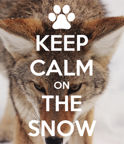 Poster: KEEP CALM ON THE SNOW