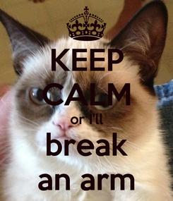 Poster: KEEP CALM or I'll break an arm