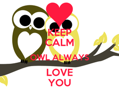 Poster: KEEP CALM OWL ALWAYS LOVE YOU