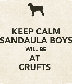 Poster: KEEP CALM SANDAULA BOYS WILL BE AT  CRUFTS