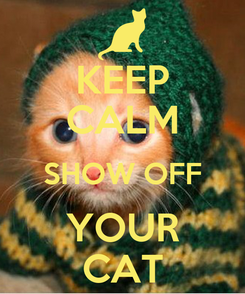 Poster: KEEP CALM SHOW OFF YOUR CAT
