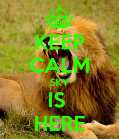 Poster: KEEP CALM SKY IS  HERE