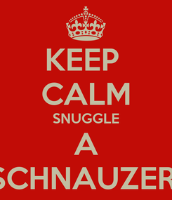 Poster: KEEP  CALM SNUGGLE A SCHNAUZER!