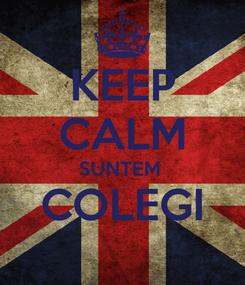 Poster: KEEP CALM SUNTEM  COLEGI