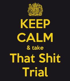 Poster: KEEP CALM & take That Shit Trial
