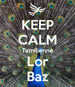 Poster: KEEP CALM Tamilienne Lor Baz
