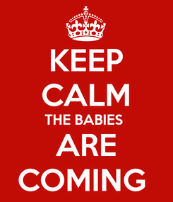 Poster: KEEP CALM THE BABIES  ARE COMING