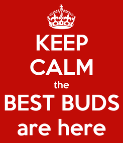 Poster: KEEP CALM the BEST BUDS are here