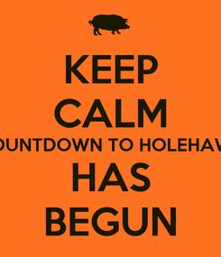 Poster: KEEP CALM THE COUNTDOWN TO HOLEHAWGS '14 HAS BEGUN