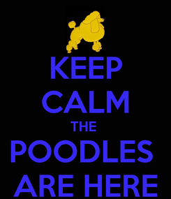 Poster: KEEP CALM THE  POODLES  ARE HERE