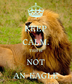 Poster: KEEP CALM. THIS IS NOT AN  EAGLE