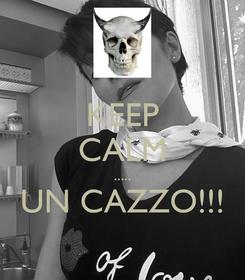 Poster: KEEP CALM ..... UN CAZZO!!!