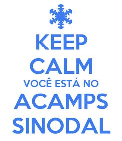 Poster: KEEP CALM VOCÊ ESTÁ NO ACAMPS SINODAL