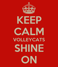 Poster: KEEP CALM VOLLEYCATS SHINE ON