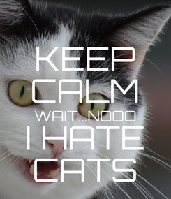 Poster: KEEP CALM WAIT...NOOO I HATE CATS