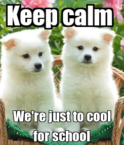 Poster: Keep calm  We're just to cool for school