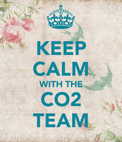 Poster: KEEP CALM WITH THE CO2 TEAM