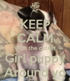 Poster: KEEP CALM With the cutest Girl puppy Around yo