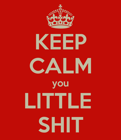 Poster: KEEP CALM you LITTLE  SHIT