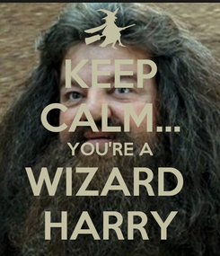 Poster: KEEP CALM... YOU'RE A WIZARD  HARRY