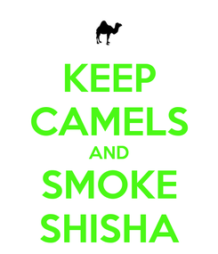 Poster: KEEP CAMELS AND SMOKE SHISHA