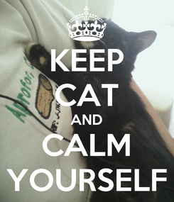 Poster: KEEP CAT AND CALM YOURSELF