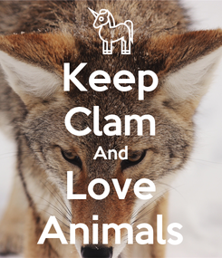 Poster: Keep Clam And Love Animals