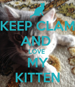 Poster: KEEP CLAM AND  LOVE  MY KITTEN