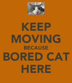 Poster: KEEP MOVING BECAUSE BORED CAT HERE