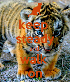 Poster: keep  steady and  walk  on