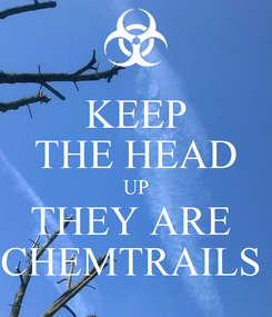 Poster: KEEP THE HEAD UP THEY ARE  CHEMTRAILS