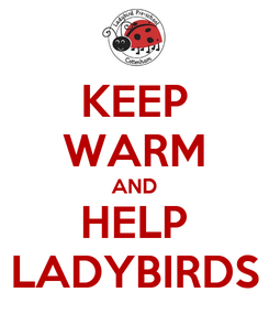 Poster: KEEP WARM AND HELP LADYBIRDS