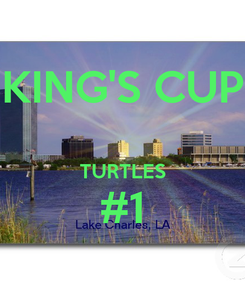 Poster: KING'S CUP  TURTLES #1