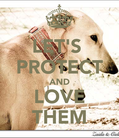Poster: LET'S  PROTECT AND LOVE THEM