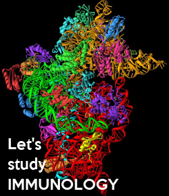 Poster: Let's