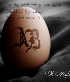 Poster: Let the wind carry you home Blackbird fly away May you never be broken again