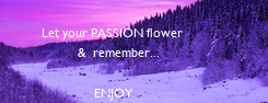 Poster: Let your PASSION flower