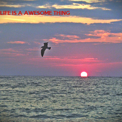 Poster: LIFE IS A AWESOME THING