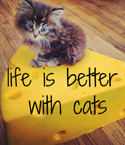 Poster:  life is better  with cats