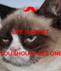 Poster: LIFE IS GREAT    YOU SHOULD GET ONE