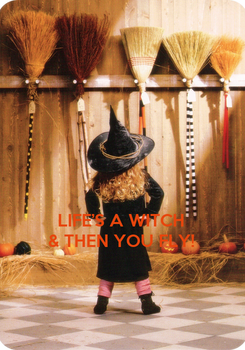 Poster:    LIFE'S A WITCH & THEN YOU FLY!