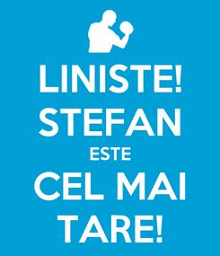 Poster: LINISTE! STEFAN ESTE CEL MAI TARE!