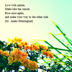 Poster: Live with nature,