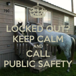 Poster: LOCKED OUT? KEEP CALM AND CALL PUBLIC SAFETY