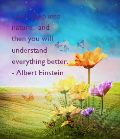 Poster: Look deep into  nature,  and  then you will  understand  everything better. - Albert Einstein