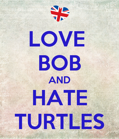 Poster: LOVE  BOB AND HATE TURTLES