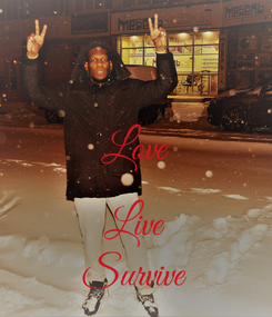 Poster:  Love  Live Survive