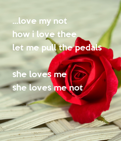 Poster: ...love my not how i love thee let me pull the pedals  she loves me she loves me not
